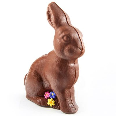 Chocolate Bunny with flowers